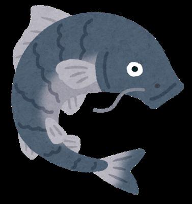fish_koi_black.png