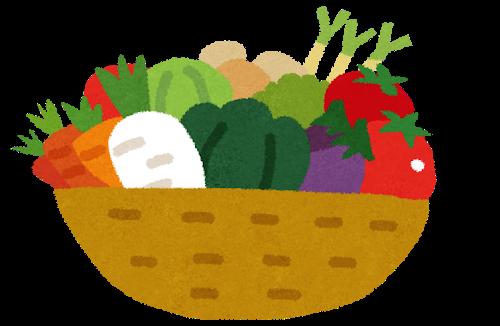 味噌汁の具で入っていたら嬉しい野菜